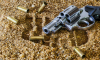 ФСБ пресекла контрабанду оружия из Евросоюза в Россию