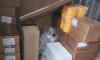 """Система """"Меркурий"""" обнаружила в Петербурге полтонны фальсифицированного сливочного масла"""