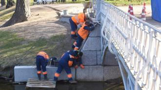 В Таврическом саду очистят и обновят пешеходный мост