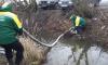 Экослужба выкачала 300 кг воды с нефтью из канавы на Коллонтай