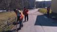 В Петродворцовом районе проводят весеннюю генеральную ...
