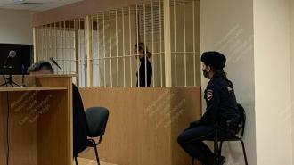 Смольнинский суд продлил арест Марины Кохал