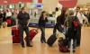 СМИ: египетскую таможню можно пройти без досмотра за 10 евро
