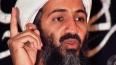 Бен Ладен не дает покоя. «Аль-Каида» опубликовала ...