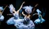 Фестиваль балета Dance Open