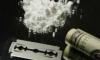 В Петербурге изъяли партию кокаина на 173 млн рублей