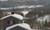 В Ленобласти хотят ввести земельный капитал для многодетных семей