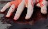 На Богатырском проспекте нетрезвая женщина порезала своего приятеля