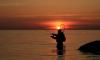 В Петербурге и Ленобласти с 20 апреля вступает запрет на ловлю рыбы