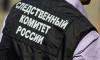 В Петербурге возбуждено уголовное дело по факту обнаружения тел матери и ребенка