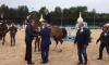 Кубок губернатора Ленобласти разыграют 7 июля в деревне Энколово