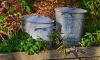 В Петербурге ветеранам компенсируют расходы на вывоз мусора