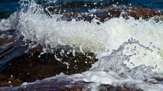 На берегу Финского залива нашли труп мужчины в калошах