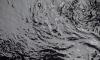Три петербургские компании сливали вредные вещества в воду