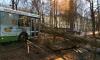 Ночью в Петербурге сильный ветер ломал деревья, а вода из Финского залива рвалась на улицы