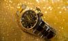 В Пулково у москвича украли часы за 300 тысяч рублей