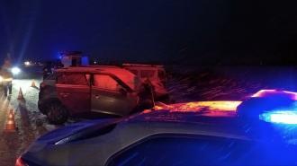 В лобовом ДТП на дороге М10-Никольское 41К-173 погиб пассажир