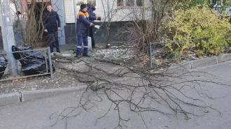 Вице-губернатор Бондаренко оценил уборку во всех районах города