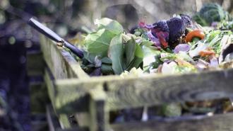 Аппарат по превращению мусора в деньги может появиться на Рубинштейна