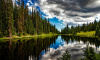 В Госдуме обсудят новый закон о защите российского леса