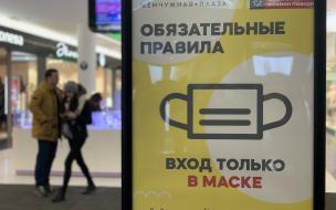 В Петербурге за сутки коронавирус подтвердился у 956 человек