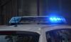 Пьяная петербурженка сообщила о теракте, чтобы проникнуть в квартиру брата
