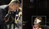 """""""Голос"""", 4 новый сезон: новые наставники и выход звезды Дома 2 - яркий старт проекта 4 сентября"""