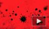 ВОЗ объявила Европу центром пандемии коронавируса