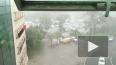 МЧС Петербурга обещает ливни с грозами и туман в субботу