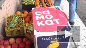 """""""Самокат"""" доставил 500 кг фруктов в общежитие Мечникова с изолированными студентами"""