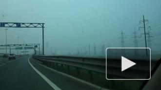 Смог над Петербургом - отголосок московских пожаров?