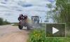 В Ленобласти уничтожают борщевик вдоль обочин дорог