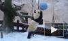 Видео: В Московском зоопарке панды познакомились со снегом