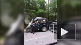 """В ДТП с """"Нивой"""" и большегрузом во Всеволожском районе погиб водитель"""