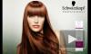 SCHWARZKOPF BC Color Save Шампунь для Волосся без Сульфатів