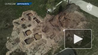 В Новгородской области обнаружили захоронение мирных жителей, погибших от рук нацистов