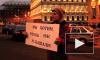 Тюльпанов: Закон об ЛГБТ- пропаганде сделал ЗакС всемирно известным