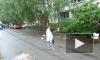 Пьяный петербуржец топлесс бросался мебелью из окна и сломал руку полицейскому на Ленской улице