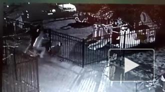 Ужасающее избиение молотками бизнесмена на Большой Пушкарской зафиксировали на видео камеры наблюдения