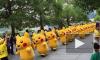 Мимо российского посольства в Японии прошло более тысячи Пикачу