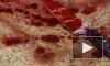 В Башкирии многодетная мать изрезала ножом свою пятилетнюю дочь