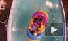 """""""Дом 2"""": свежие серии - результаты голосования 3 этапа конкурса ЧГ, звезда шоу в реанимации после потери сознания"""