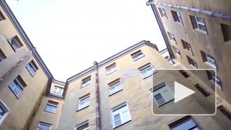 Стало известно, куда в Петербурге можно пожаловаться на соседей