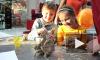 Счастливые детские дни - новый семейный фестиваль