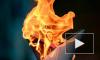Олимпийский огонь в Воронеже 18.01: маршрут, время, перекрытие улиц и несостоявшееся купание в проруби
