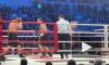Кокляев и Емельяненко могут провести новый бой по правилам ММА