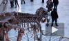 Ученые нашли объяснение гибели динозавров