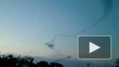 Апокалипсис: летучие мыши атакуют