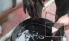 Курсанта выгнали из Морского университета за видео о загрязнении реки Лены