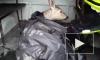 В сети появилось видео, как кыштымские спасатели вернули косулю на землю